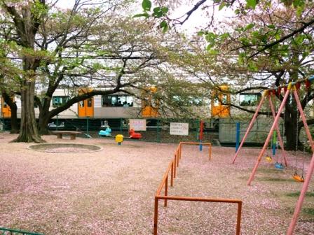 公園blog.JPG