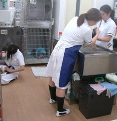 3人洗い.JPG